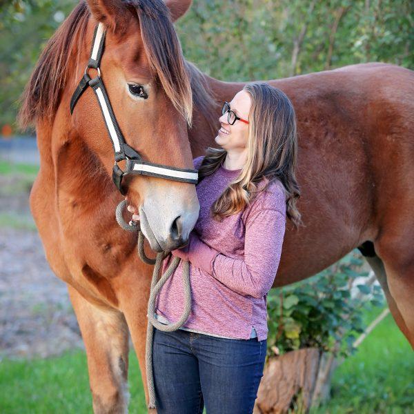Jabulani-Horse-Photo.jpg